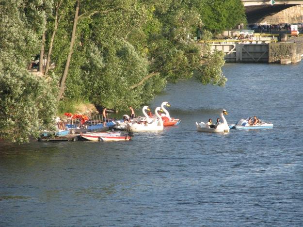 Prague Swan Pedalo 2 Blog
