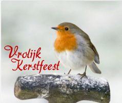 Dutch Christmas card featuring a Robin