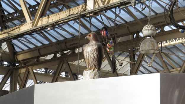 Extremely ineffective model hawk on top of the cafe at Waterloo