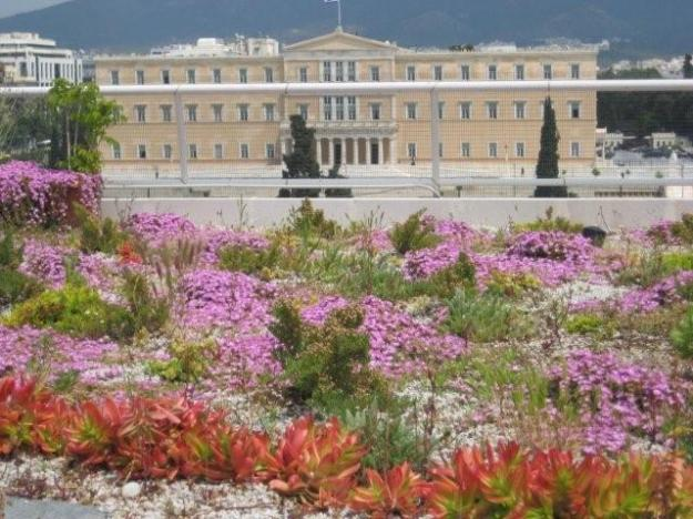 "My absolute favourite - the Treasury Building in Athens, Greece. A magnet for pollinators and birds. ""The Treasury - Syntagma"" by Andrew Michael Clements - Oikosteges Archive. Licensed under CC BY 3.0 via Wikimedia Commons"