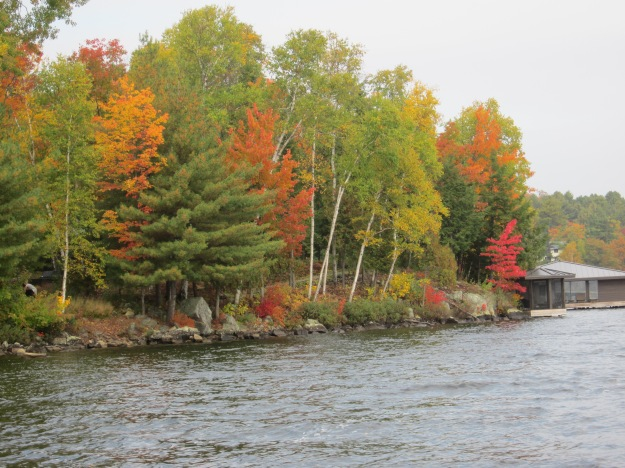 Autumn 2012 at Lake of Bays, Ontario, Canada