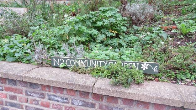 The N2 Community Garden