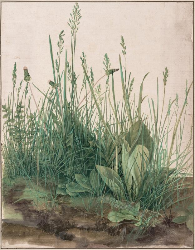 By Albrecht Dürer - NgELdACk3I8Jkg at Google Cultural Institute, zoom level maximum, Public Domain, $3