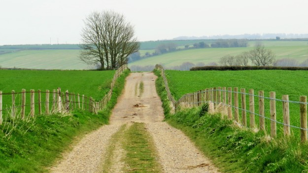 A farm track around Milborne St Andrew.