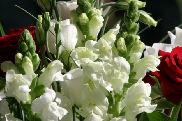 Bridal bouquet with white antirrhinums (Photo Four - credit below)