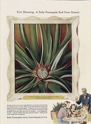Photo Five (Pineapple advert) from https://www.artsy.net/article/artsy-editorial-georgia-okeeffe-hawaii-paint-pineapples-dole