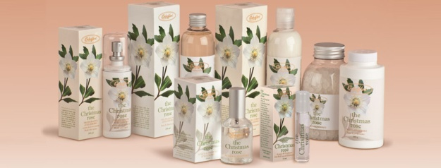 Photo Three from https://www.erbaflor.com/en/shop/the-scents-of-nature/the-christmas-rose-en/christmas-rose-perfume-1-detail