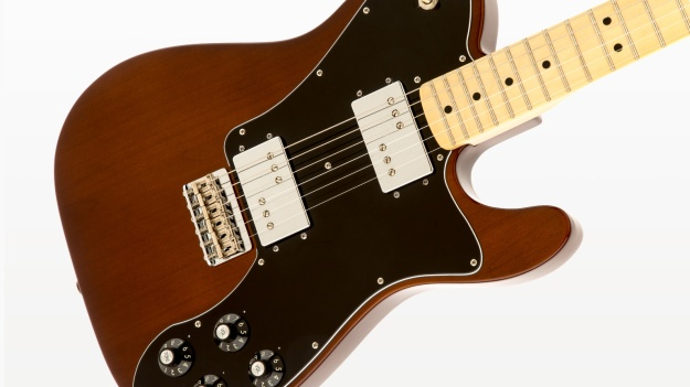 Photo Eight from https://www.fender.com/articles/tech-talk/ash-vs-alder-whats-the-diff